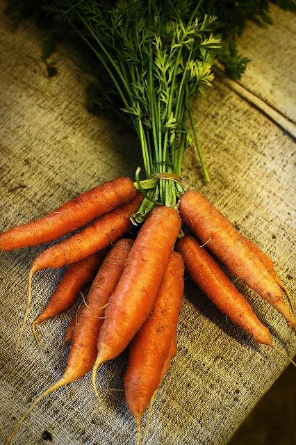 carrot-664741_1280
