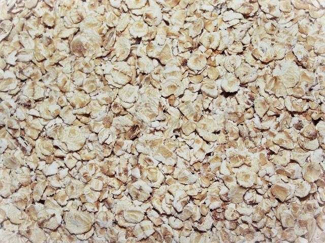 oatmeal-761434_640