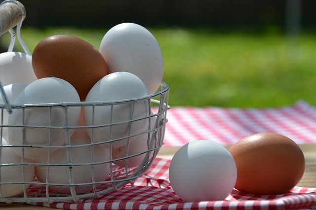 Los huevos presentan minerales como el hierro